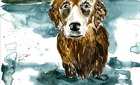 wet dog | golden retriever portrait | 9×12 watercolor