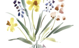 Daffodil Mix Bouquets | 9×12 watercolor